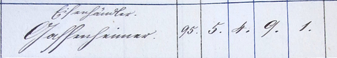 Sc1875-Census-Entry-Samuel-G.