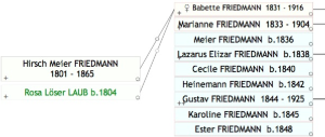 Friedmann Berkach