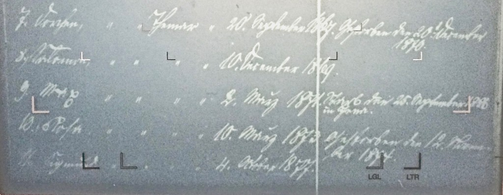 Hofmann-Lippmann-2o2